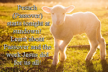 Pesach (Passover) starts tonight at sundown!