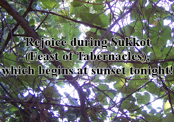 Sukkot (Feast of Tabernacles)